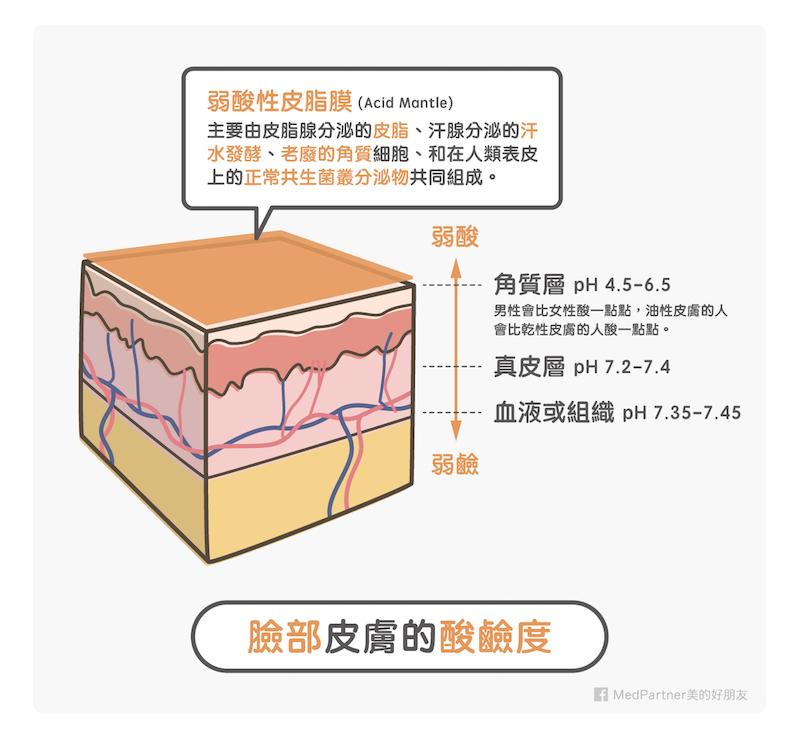 弱酸性皮脂膜_皮膚酸鹼值