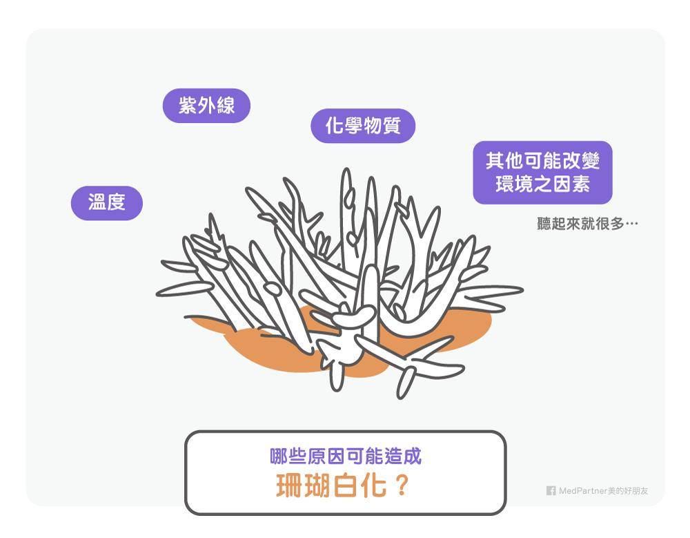 珊瑚白化原因