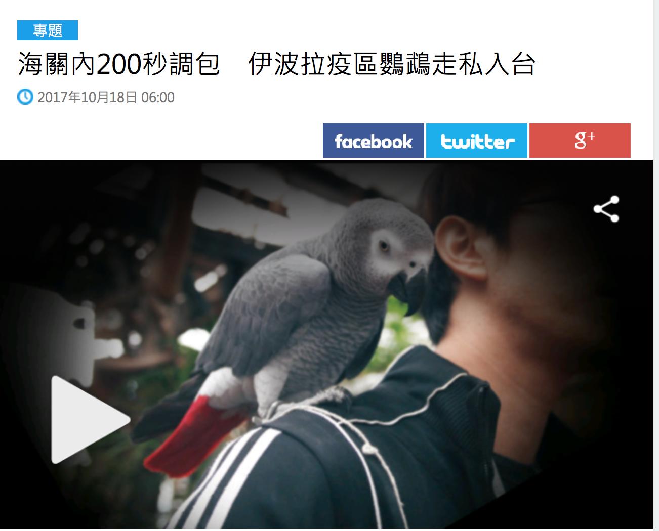 媒體報導從剛果走私鸚鵡的新聞