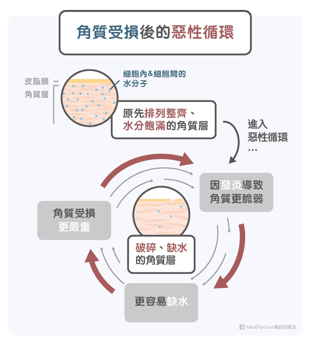 角質受損後的惡性循環