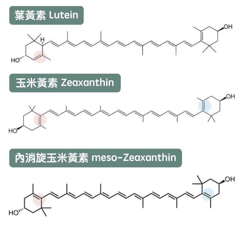 葉黃素、玉米黃素和內消旋玉米黃素的化學結構