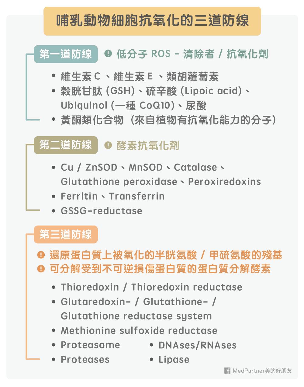哺乳動物細胞抗氧化的三道防線