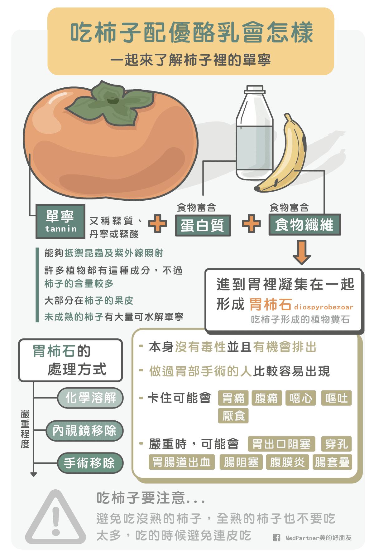 柿子以及單寧總結