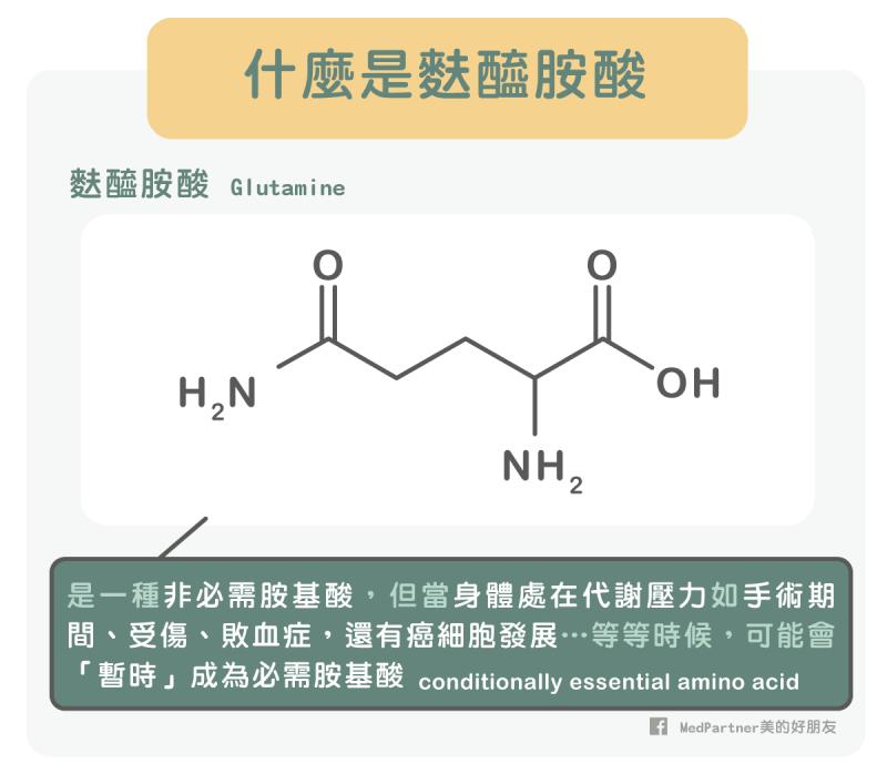 麩醯胺酸是什麼?