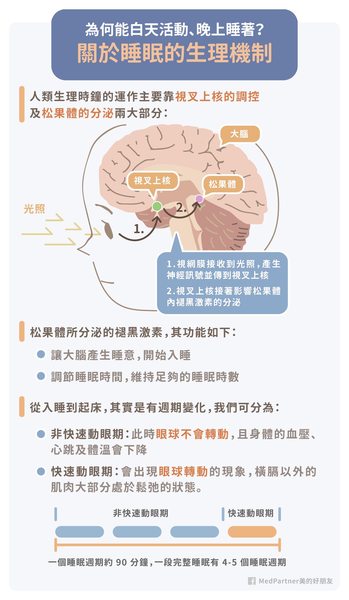 失眠_生理機制